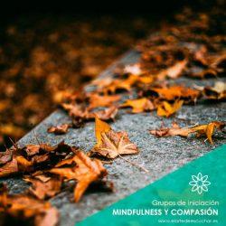 curso mindfulness ruzafa valencia